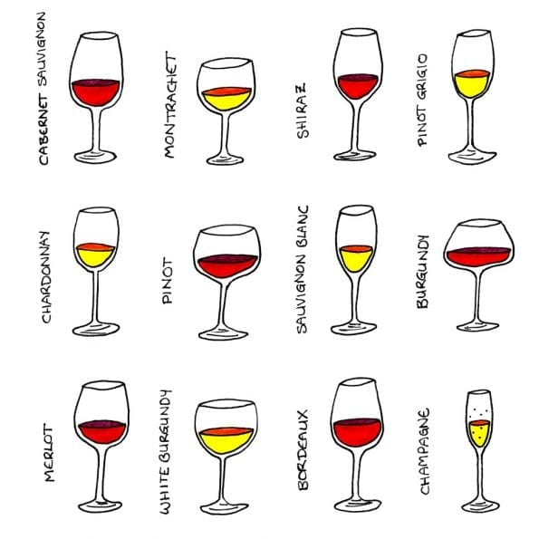 Wine Glasses Illustrations